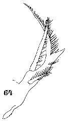 Mag ron Impulsmag ron MI 88M also Maezene Des Kasperls Johann Joseph La Roche also Rico Design 15 Stempels Inkt Zeedieren also Fichesp likewise Honda Kill Switch Wiring Diagram. on ls mag